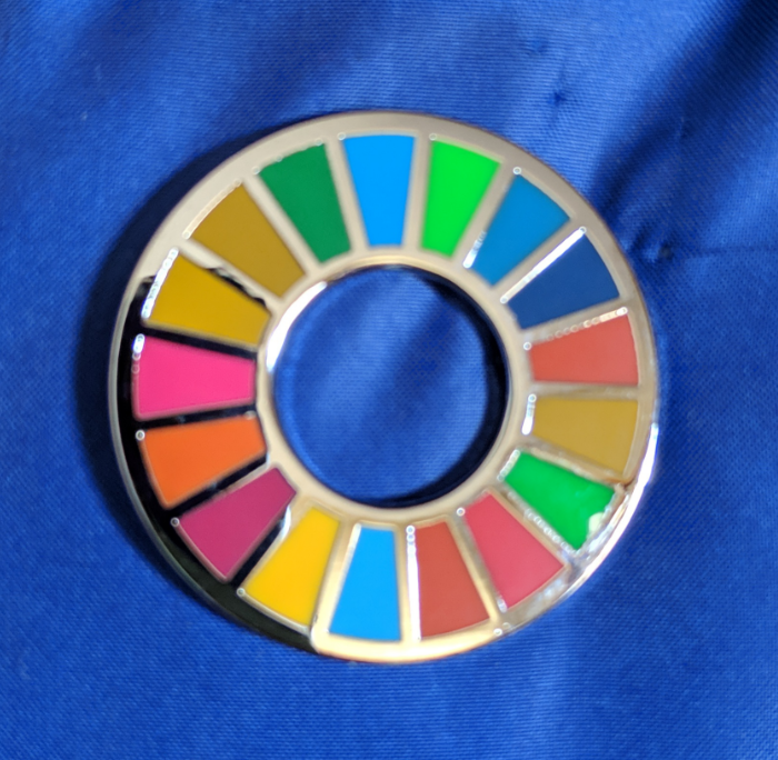 UN Sustainable Development Pin