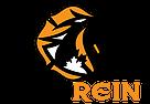 FireRein_Logo